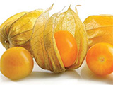 Modified Packaging - Physalis