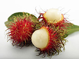 Modified Packaging - Rambutan