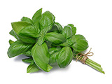 Modified Packaging - Basil