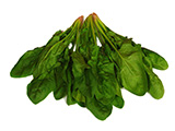 Modified Packaging - Spinach